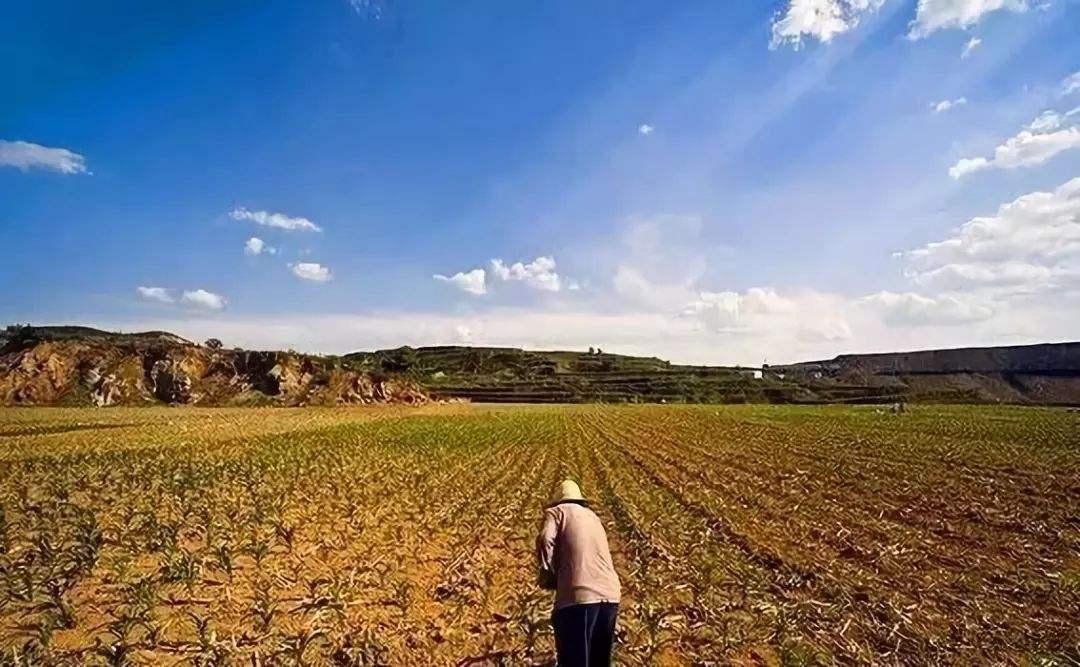土地征收多少钱一亩