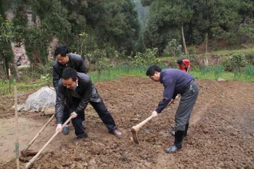 土地征收的农民怎么办,国家新政补偿妥帖