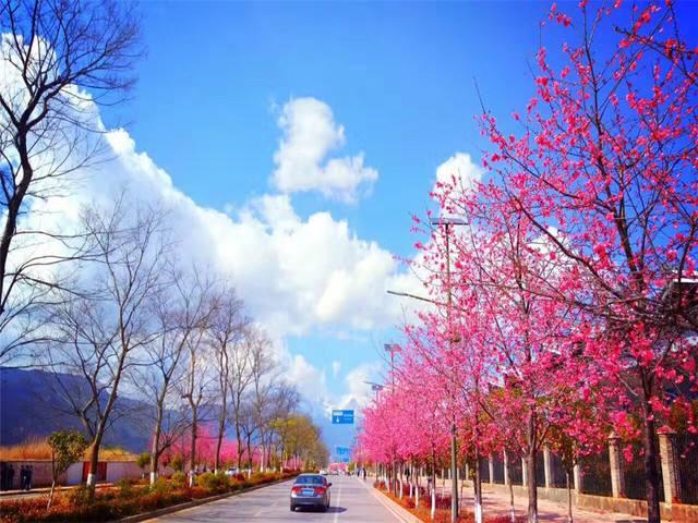 丽江什么时候去最合适?不要错过玉龙雪山的四季