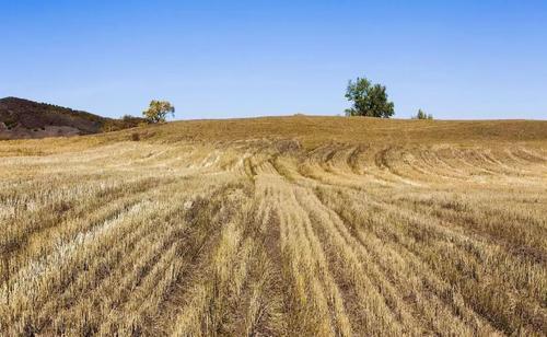 土地征收补偿费按什么补偿?土地征收的补偿标准是什么