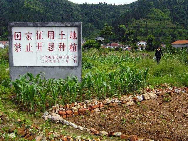 土地征收和土地征用的主要区别在于土地所有权性质改变