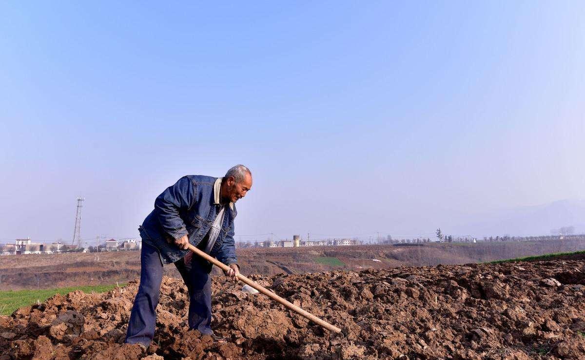 土地征收补偿款集体与农户怎样分配?来看看