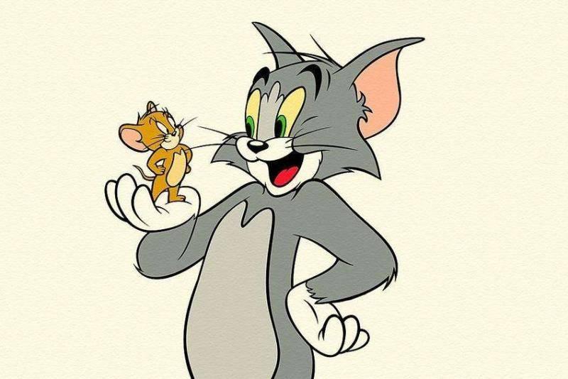 猫为什么要吃老鼠?并不是我们所想的那样